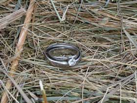Lost Ring Yard
